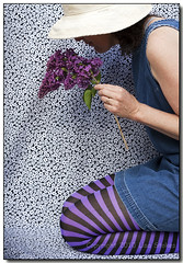 Lilacs and Stripes I (Lisa-S) Tags: portrait woman white selfportrait ontario canada black flower me hat dress purple stripes lisas lisa tights ring lilac denim allrightsreserved brampton claddagh smelling may10 6894 theunforgettablepictures copyrightlisastokes