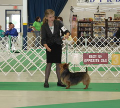 Ellie Oskhosh Best of Breed