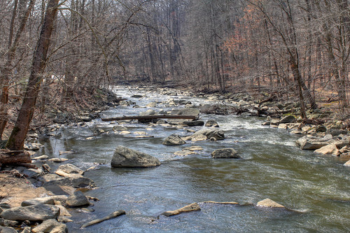 Rock Creek, Washington DC (by: Mr. T in DC, creative commons license)