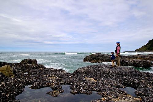 Oregon coast (31)