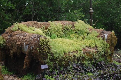 Moss Couch, My Big Backyard, Memphis Botanic Garden
