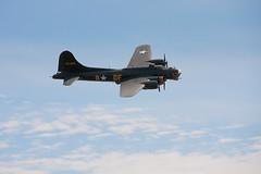 "B-17 Flying Fortress ""Sally B"" (_Spacedog_) Tags: airplane flying airshow b17 fortress flyingfortress spacedog sallyb b17flyingfortresssally"