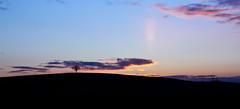 The Setting Sun (DaveF(Footy)) Tags: sunset sky nature silhouette skyline dusk fields orangesky dramaticsky warwickshire warwickcastle settingsun canon450d viewsofwarwickshire