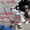 nordiske føtter 12.06.10