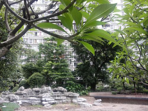 Outdoor Landscape Taken Using Nokia N8