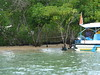 P1040799 (raafjes) Tags: bali turtleisland pulauserangan