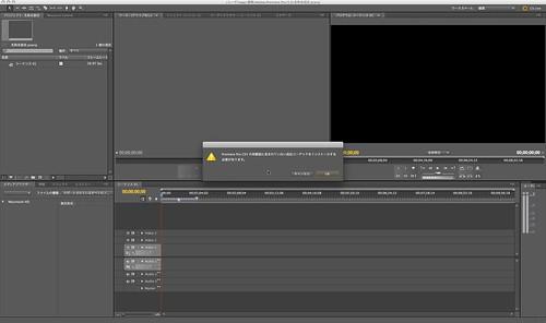 Adobe Premiere Pro CS5100209_002