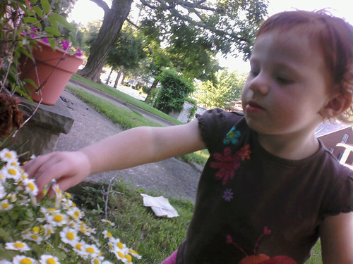 Picking flowers.