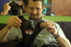 ecco! si, così va meglio (Gilda3) Tags: dog black cane nero pelle susi lifting pelliccia modifica gilda3