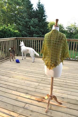 Daenerys shawl-9