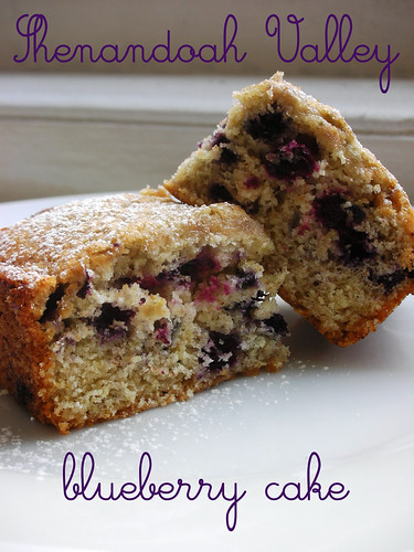 Shenandoah Valley blueberry cake