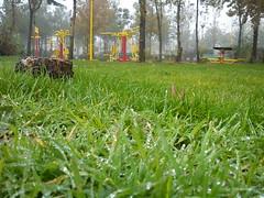 دشت کوچک سرسبز (shadi13se) Tags: ، باران پاییز سبزه چمن شبنم یهار