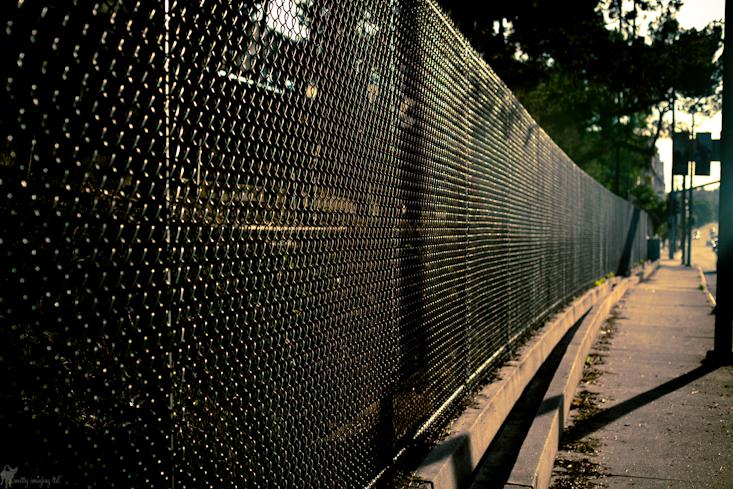 Century City Fence