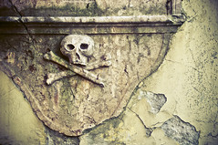 Skull on the Church's Wall (Brave Lemming) Tags: sculpture church wall facade death skull hungary bones magyar orthodox easterneurope magyarország serbian szentendre hongrie serbianorthodoxchurch