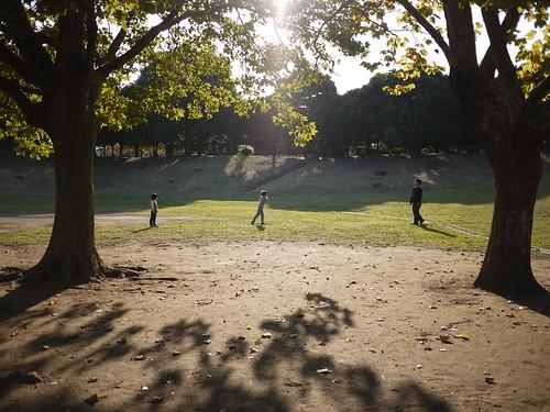 秋、午後、公園、親子