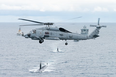 Dynamic Mongoose 17 (NATO HQ MARCOM) Tags: dynamicmongoose antisubmarinewarfare alliedmaritimecommand exercise photex nato marcom asw us jamesewilliams uss sh60 seahawk