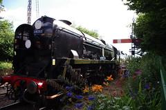 IMGP1777 (Steve Guess) Tags: watercressline midhants steam railway heritage line ropley alresford hampshire england gb uk bullied pacific battleofbritain34052 34053 lorddowding sirkeithpark 34052 braunton battleofbritain 34046 double heading flowers