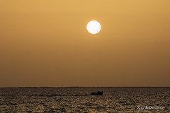 Final light (TylerSchlittPhotography) Tags: photography sunset alabama alwx sun flickr canon80d water orange gulf mexico gulfofmexico