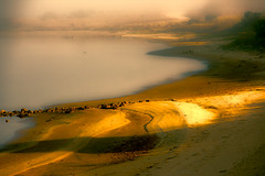 into the mists of time (cheezepleaze) Tags: mist fog shore beach sand dawn morninglight goldenhour hss coorong explored