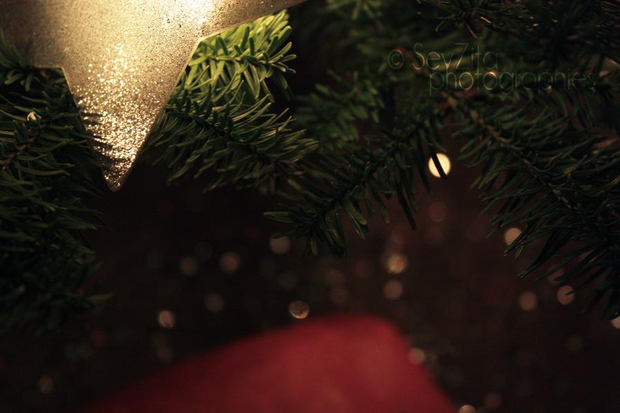 Noël 2009 #9