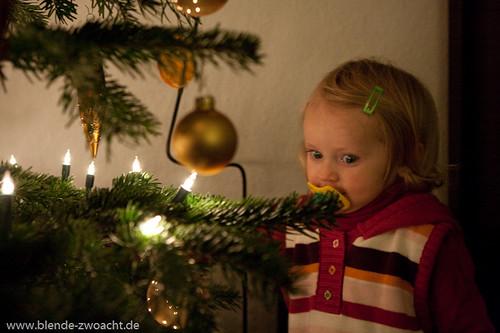 TDB_Weihnachten_09-7544