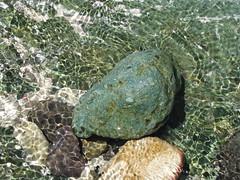 Fijian Rock