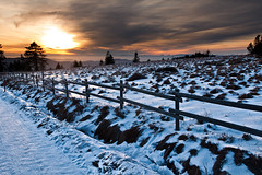 here comes the wintersun (Dennis_F) Tags: street schnee winter sunset sky sun sunlight snow black tree clouds forest sonnenuntergang sony spuren himmel wolken 1750 dslr zaun tamron schwarzwald blackforest wal sonnenlicht a700 schliffkopf tamronlens wintersonne tamron1750 sonyalpha sonydslr tamron175028 alpha700 sonya700 sonyalpha700 dslra700 tamronobjektiv sonneimwinter