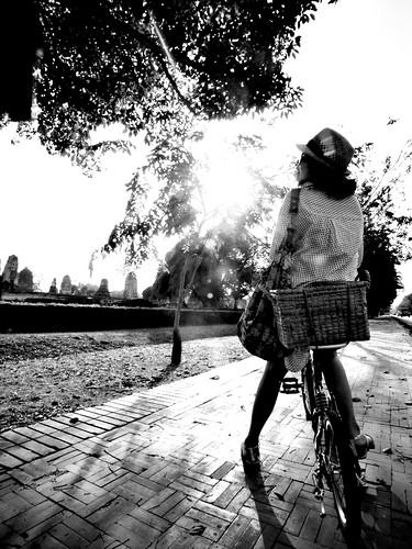 Ayutthaya Rider