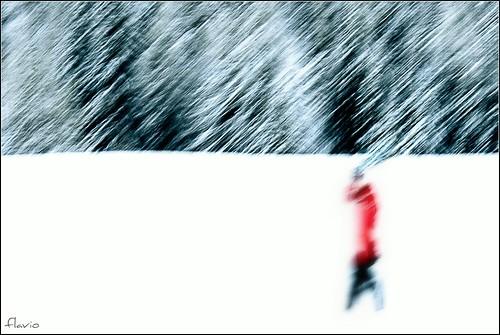 forme e colori..nella neve by flaviogallinaro