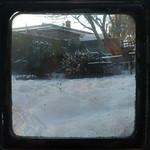 TtV Real Snow Garden 1 Jan 2010 thumbnail