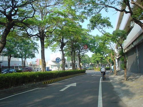 47.彰化市區外圍的林蔭大道