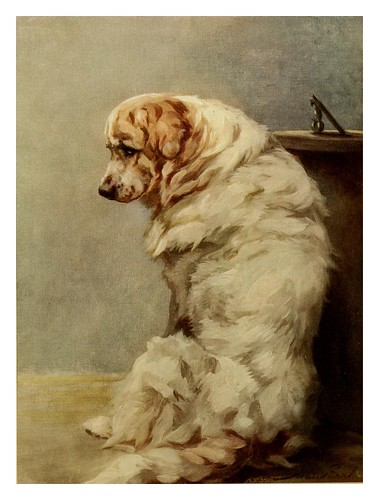 013-Mastin del Pirineo-The power of the dog 1910- Maud Earl