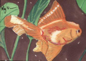 18-Fish