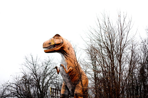 T-Rex at Dino World