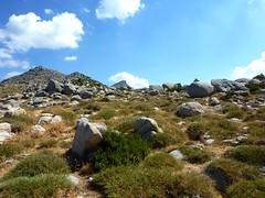 Sur la crête de Prunu : la trace vers la Punta di A Bambiola
