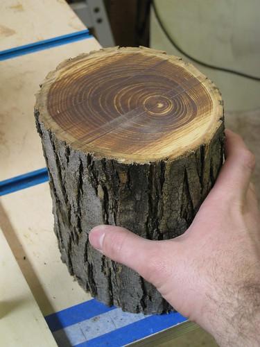 burned band saw cut through log