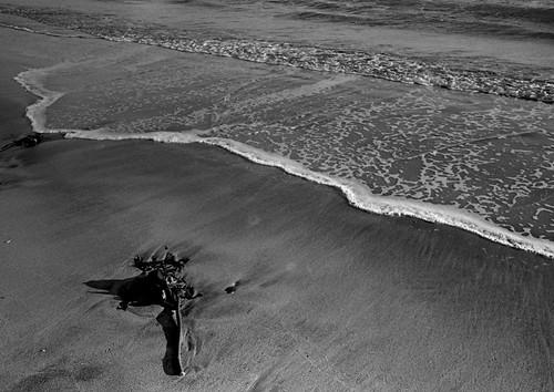 20100202-由比ヶ浜。
