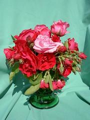 Rosenstrauß PICT6250 (Chironius) Tags: roses flower fleur rose blossom flor rosa rosen gül fiore blüte roze роуз