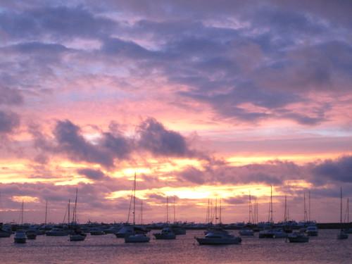 Purple skys