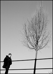 Untitled #17 (Francesco Baldiotti) Tags: bw woman tree walking blackwhite donna almostbw explore verona only lonely albero biancoenero adige camminare ringhiera cappotto esplora zuikolens zuikoom50mm passaggiata olympuse410 theauthorsplaza theauthorsclub