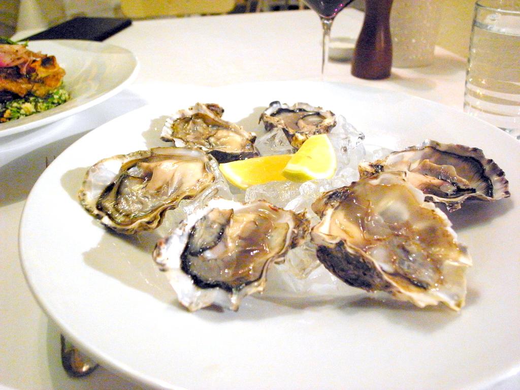 new zealand oyster kermadec