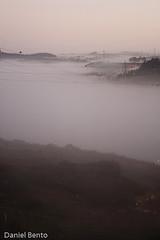 P365/10 Day034 -  Fog