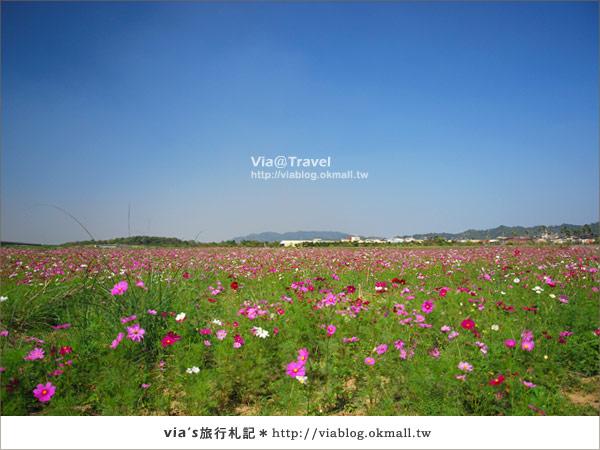 【2010春節旅遊】春節假期~南投市貓羅溪沙雕藝術節21
