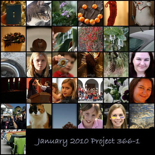 2010 01 Project 366-1 Mosaic