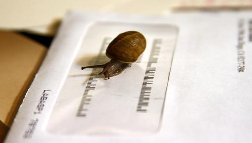 snail mail!