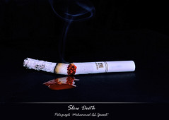 Slow Death (Mohammad Al-yaeesh  ) Tags: