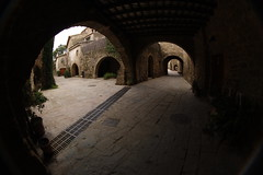 Monells (Sun is her name) Tags: fisheye monells