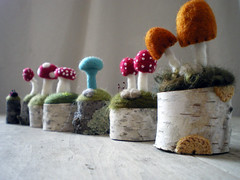 the lineup (lilfishstudios) Tags: art nature mushrooms oak handmade craft birch needlefelting fiberart toadstools lilfishstudios itsamushroomextravaganza