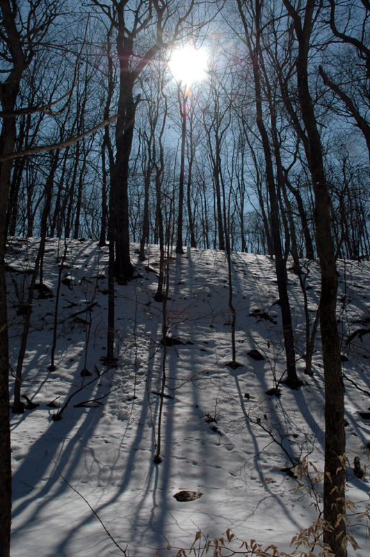 sunny hike in CVNP