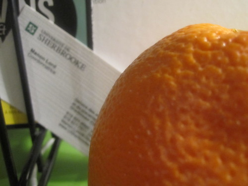 Orange from the bistro - free